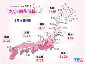 Sakura_front_1440x1080